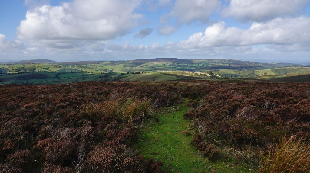 Stiperstones from Long Mynd